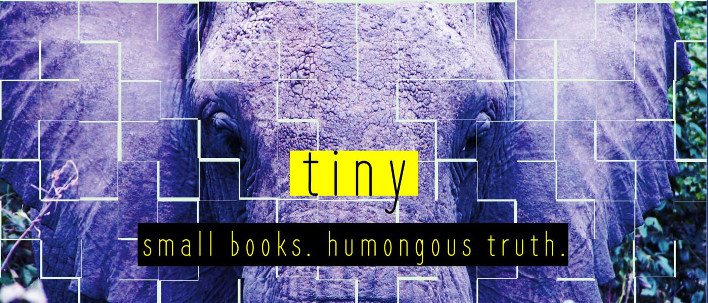 Tiny Series