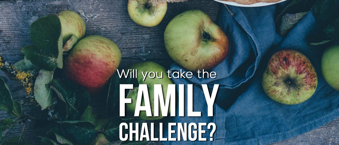 Family Challenge 2017
